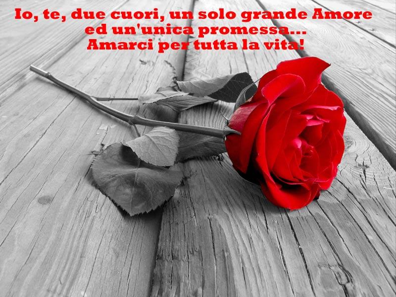 Immagini D'amore Rosa