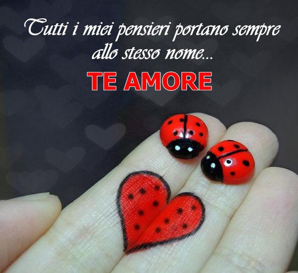 Immagine Amore Coccinelle
