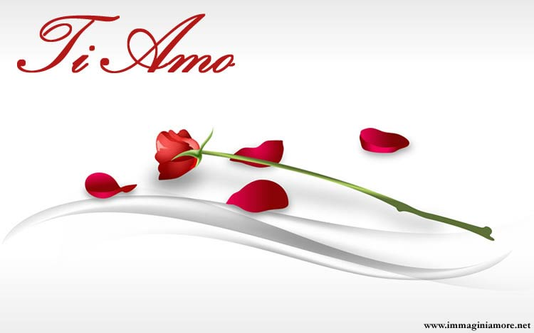 Immagine Amore Rosa