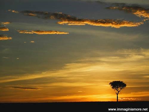 Immagine tramonto d 39 amore bellissima immagine tramonto for Immagini natalizie d amore